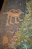 Animal of some sort carved into the Native Sandstone - V Bar V Ranch Heritage Site, Arizona