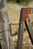 Lock the gate on your way out - Dried Wooden Fence with some tin accents - V Bar V Ranch Heritage Site, Arizona