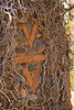 Fireplace Detail in the Old Structure - V Bar V Ranch Arizona - Photo by Cindy Bonish