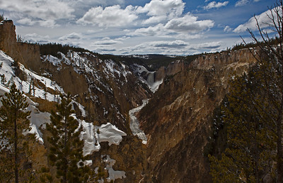 Lower Falls Yellowstone River_0634