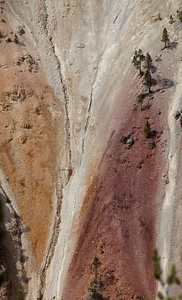 Detail Yellowstone _0644