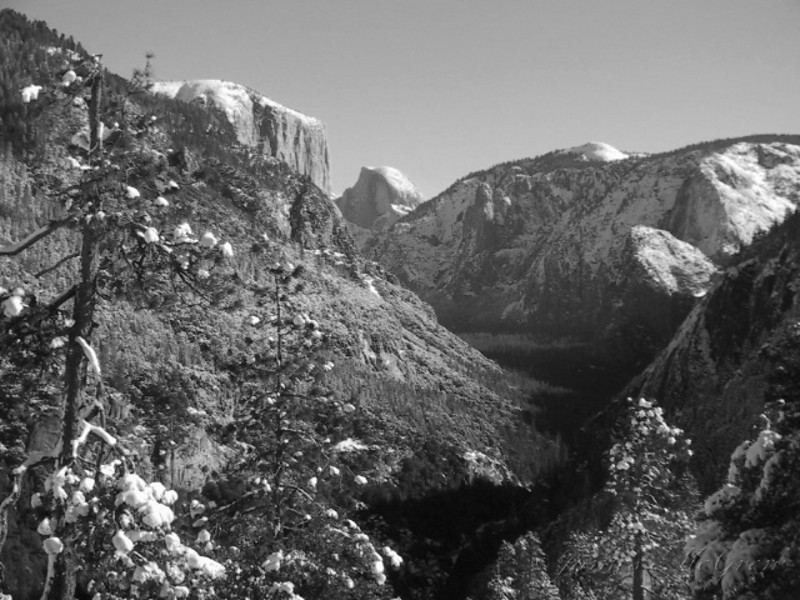 Yosemite Valley; Clear Skies after the Snow Storm.