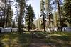 Merced Lake  HSC Tent Cabins.
