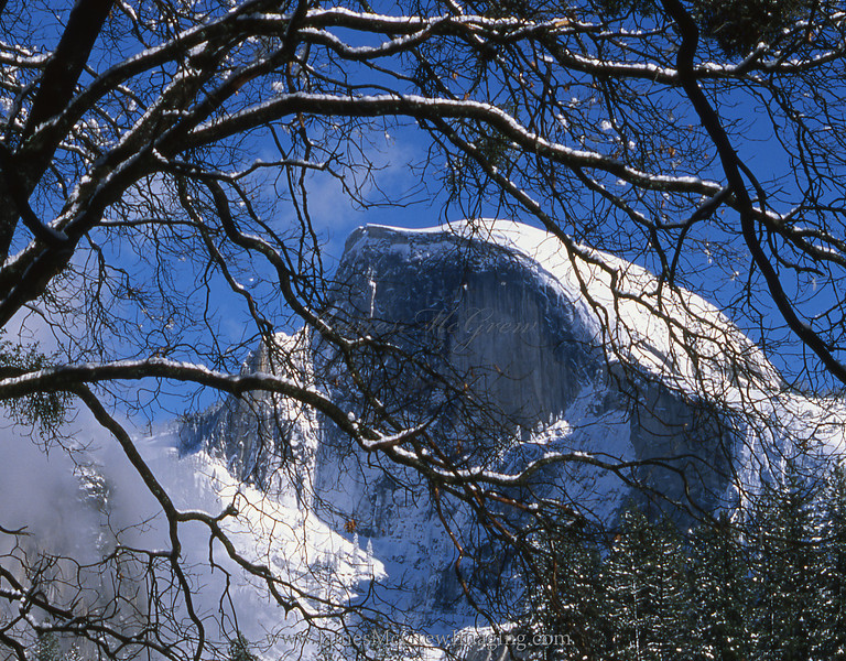 Half Dome and Oaks, Winter Afternoon.  ©2001, James McGrew