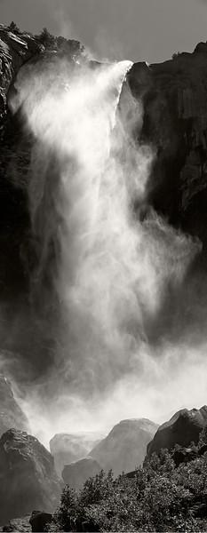 Pohono ©2012 James McGrew