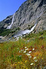 "Hetch Hetchy Wildflowers and Waterfalls.  ©1998, James McGrew<br /> <br /> Available to special donors to ""Restore Hetch Hetchy."""
