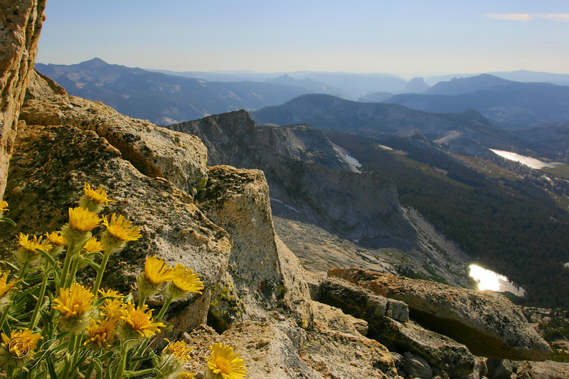 View from the Summit of Vogelsang Peak, looking to Half Dome in the distance.  Copyright ©2004, James McGrew.