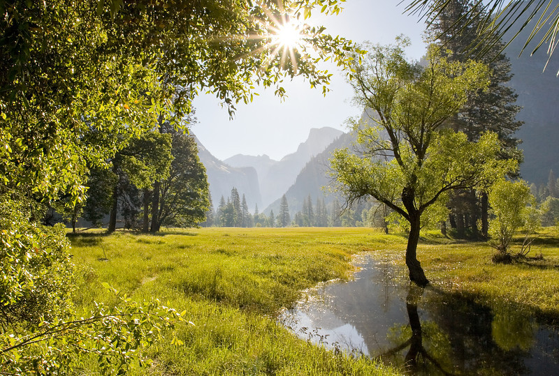 Half Dome from an Oxbow in Leidig Meadow.