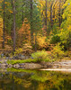 Autumn Colors on the Merced River, Yosemite Valley.<br /> 14x11 limited edition, S/N on Epson Velvet 100% cotton rag.<br /> 7x9 open edition print on canson baryta.