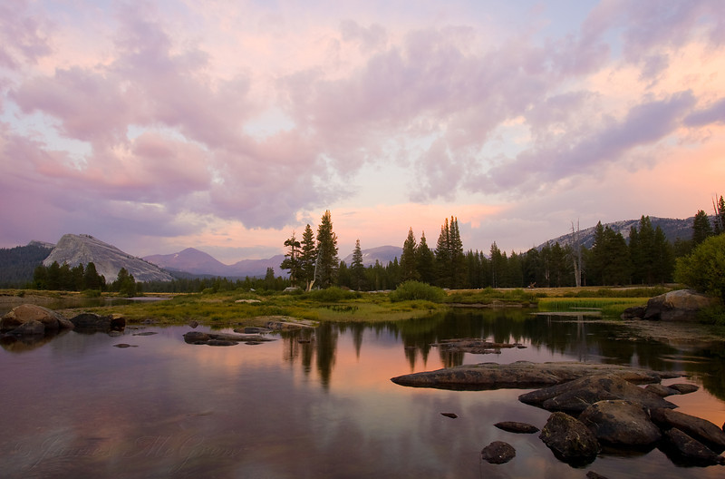 Cloud Reflections in an Oxbow in Tuolumne Meadows.
