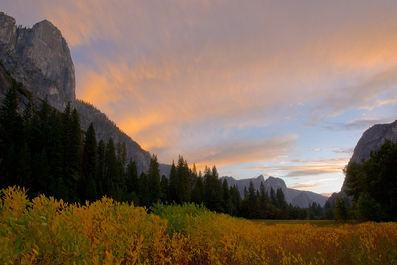 Sunset Colors over Yosemite Valley and Indian Hemp.