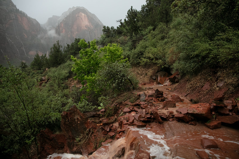 As the flash flood subsided, lots of rock were left strewn all over the trail.