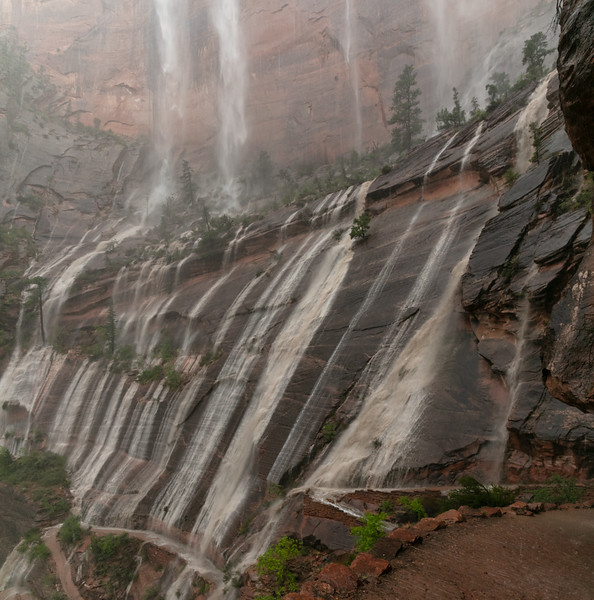 West Rim/Angel's Landing Trail becomes Flooded with waterfalls.