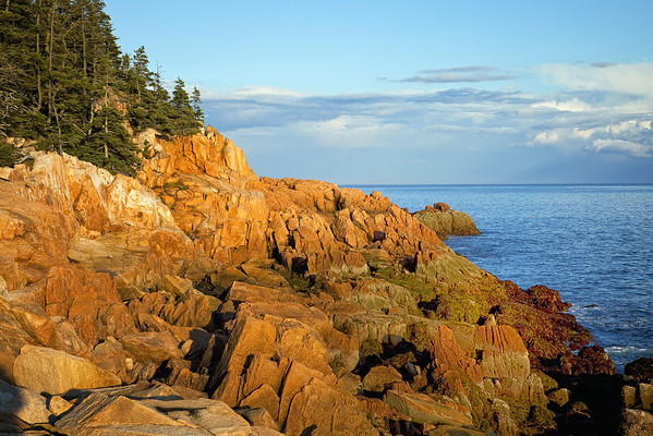 Rock formations near Bass Harbor Head Light, Acadia National Park, Maine