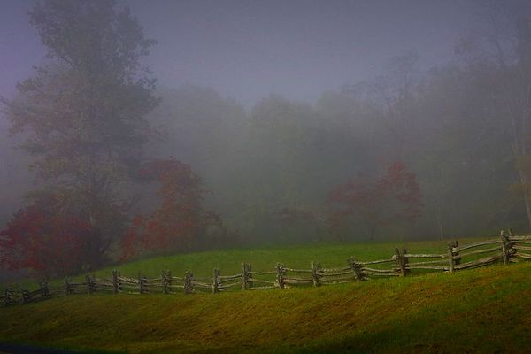 Early Morning Fog on the Blue Ridge Parkway, Virginia