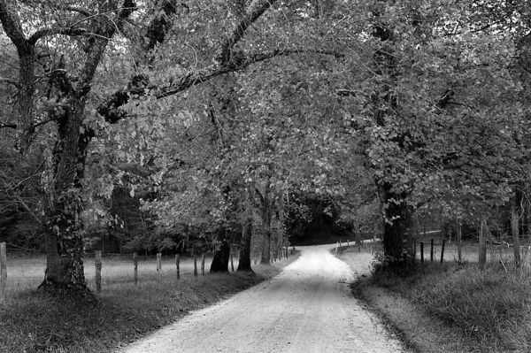 Sparks Lane in Cades Cove, Great Smoky Mountains National Park, Tennessee