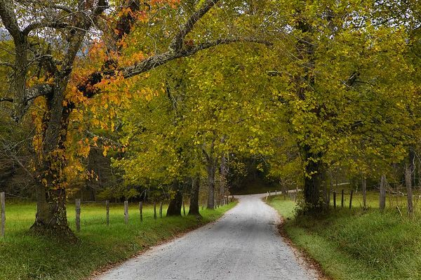 Sparks Lane, Cades Cove, Great Smoky Mountains National Park.