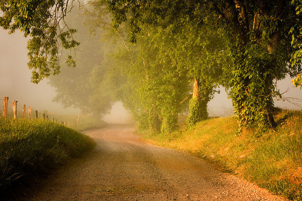 Early morning along Hyatt Lane in Cades Cove, Great Smoky Mountains National Park, Tennessee