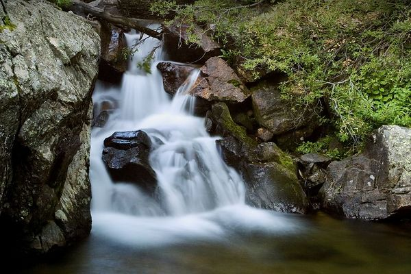 Small cascade at the head of Cañoncito along the Old Fall River Road in Rocky Mountain National Park, Colorado