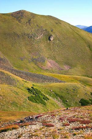 Alpine Colors & Textures along Trail Ridge Road, Rocky Mountain NP