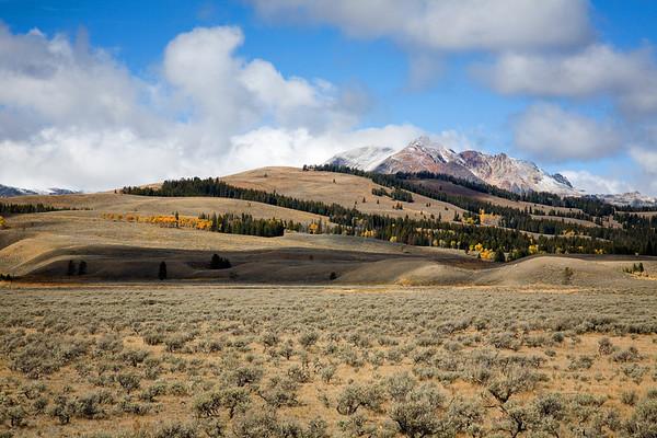 Scene in the northwestern corner of Yellowstone National Park, Wyoming