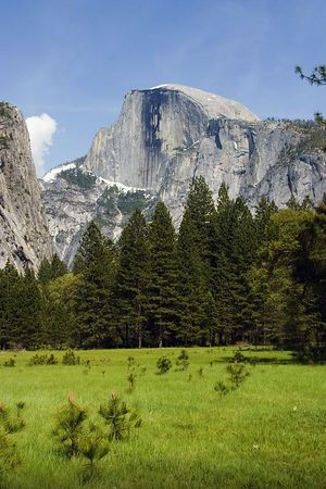 Half Dome from the floor of Yosemite Valley.