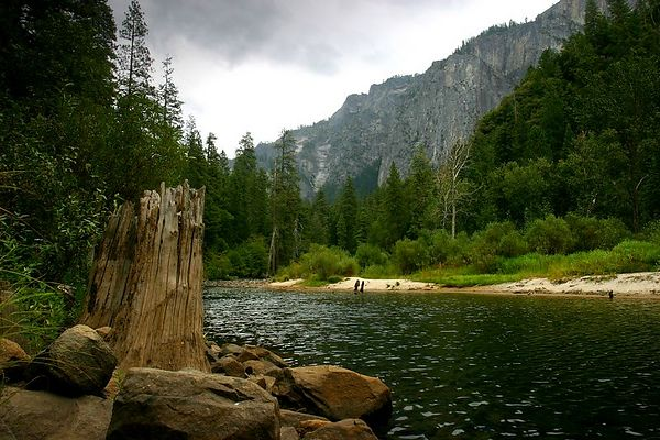 View looking east up the Merced River in Yosemite Valley, Yosemite National Park, California.