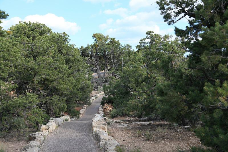 Walking Trail at the South Rim
