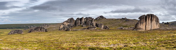Tors of the Tundra Serpentine