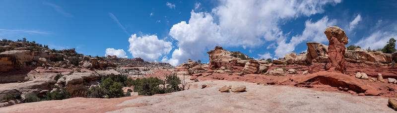 Hoodo in Cohab Canyon Trail