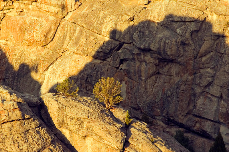 This is another sunset photo taken at the Bread Loaves at City of Rocks National Reserve.  I had hiked south from our campsite and zoomed in to get this shot of the brush juxtaposed to the shadow.