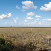 Mahagony Lookout Everglades