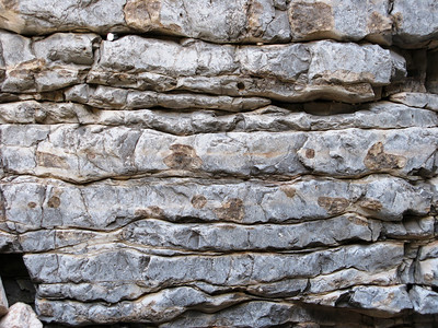 Bedded Limestone