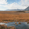 Arctic National Wildlife Refugee Pure Waters