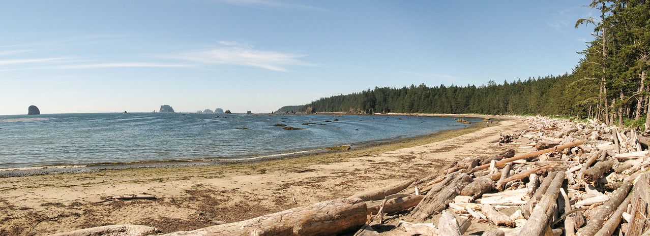 Olympic National Park Lake Ozette Beach