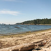 Olympic National Park Lake Ozette Beach