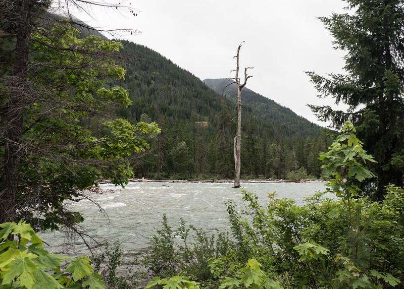 High Water on the Stehekin