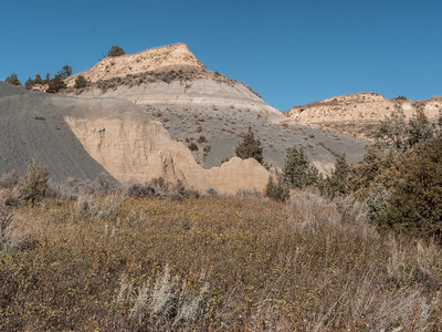 Bentonite LAyers on Caprock COulee Trail