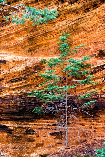 Refrigerator Canyon, Angel's Landing trail, Zion National Park