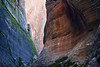 The walls of Echo Canyon, Zion National Park