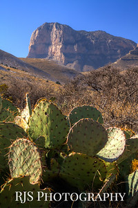 El Capitan - Guadalupe Mountains NP