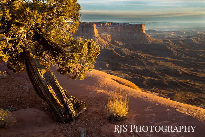An Evening in Canyonlands - Canyonlands NP