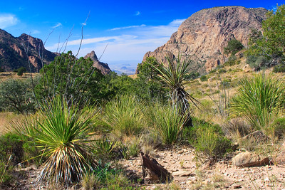 Chisos Mountain View, Big Bend National Park