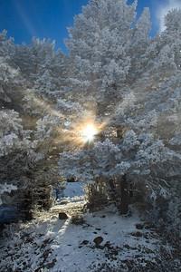 Sunrise at Mammoth Hot Springs