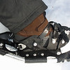 March 20, Snowshoeing with an interpreter, Crater Lake NP, Oregon.
