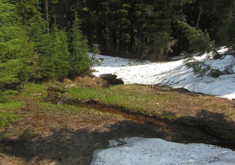 July 13, 2012.  Snow at the Crater Lake Science and Learning Center, Crater Lake National Park, Oregon.