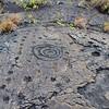 July 20, 2014.  Volcano National Park, Hawaii Big Island