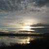 November 13, 2010.  Lower Klamath Lake NWR, California.