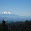 Mt. Shasta from Porcupine Gap, CSNM.