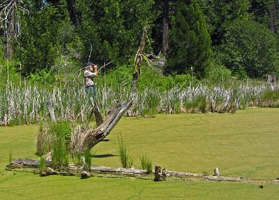 Parsnips Lakes Member Hike - June 7, 2014